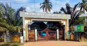 কলারোয়া পৌর নির্বাচন: ফলাফলের গেজেট স্থগিত থাকছে
